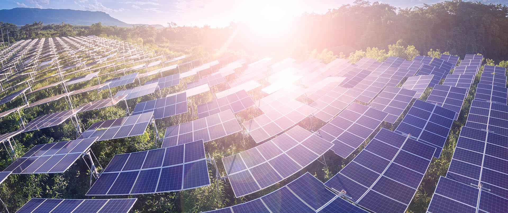 Solar Energy in Spain S.L.